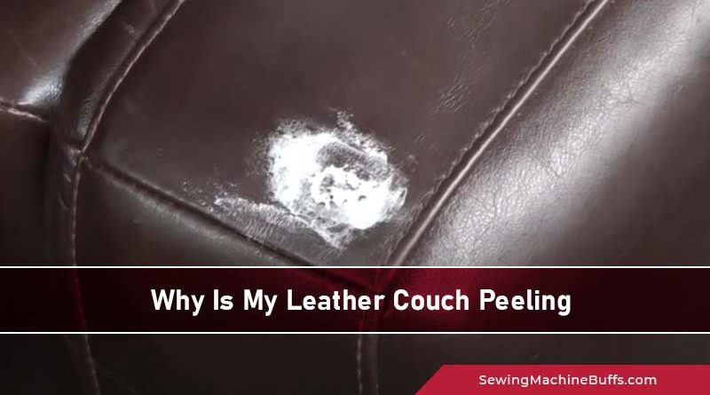 Why Is My Leather Couch Peeling